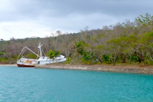 Sandy: Deluged forest and destroyed yacht at James-Bond-Beach in Northjamaica